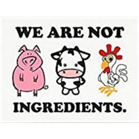 We Are Not Ingredients Framed Print Poster Show Belief Pride Sustainable Vegan Product Support Wall Desk Mount Renewable Linen Gift